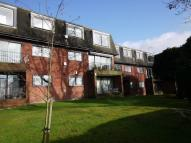 2 bedroom Flat to rent in DAINTRY LODGE 1 WATFORD...