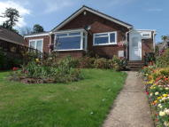 3 bed Detached Bungalow in Shepherds Close, Wembdon