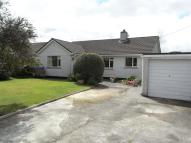 Detached Bungalow for sale in Shortlanesend