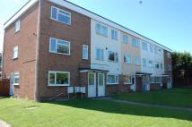 3 bed Maisonette to rent in Harwich Road...