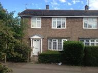 semi detached property to rent in Greenstead