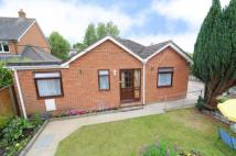 3 bed Bungalow for sale in Alton, Hampshire