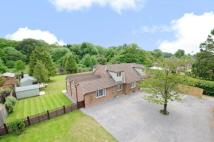 5 bed Detached property for sale in Medstead, Alton...