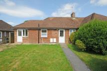 Bungalow for sale in Medstead, Alton...