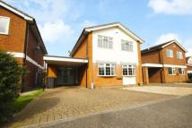 Detached property for sale in Buckland Drive...