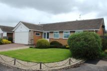 Bungalow for sale in Parker Close, Arnold...