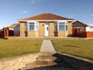 Bungalow in Holmston Drive, Ayr...