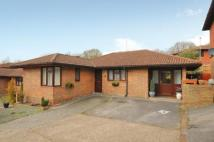 3 bedroom Bungalow for sale in Lychpit, Basingstoke...