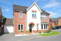 Detached property for sale in Beggarwood, Basingstoke...