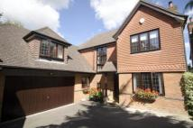 Detached house for sale in Hatch Warren...