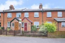 3 bed Terraced house for sale in Station Road, Cliddesden...