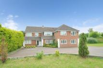 10 bedroom Detached home for sale in Basingstoke, Hampshire