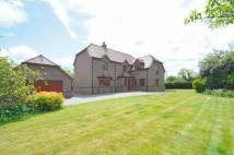 5 bedroom Detached house in Basingstoke, Hampshire