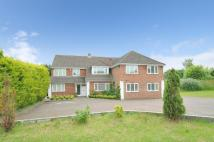 10 bed Detached house in Basingstoke, Hampshire