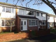 Basingstoke Terraced property for sale