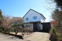 3 bed Detached home in Stockiemuir Avenue...