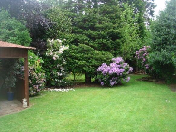 Garden to rear