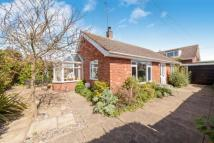 Bungalow in Willow Road, Pakefield...
