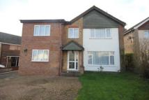 Detached property in Curlew Crescent, Bedford...
