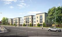 new development for sale in Campsie Grove...