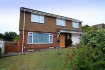 5 bedroom Link Detached House for sale in Old Farm Road, Brighton...