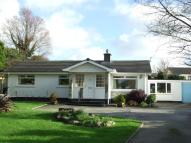 Bungalow for sale in Tehidy Road, Camborne...