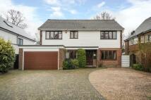Hawthorne Road Detached property for sale