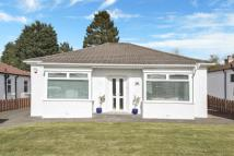 Bungalow for sale in Ruthven Avenue, Giffnock...