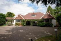 Bungalow for sale in Cobham, Surrey