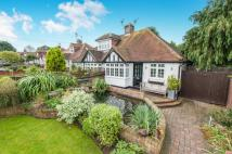 Bungalow for sale in Downside, Cobham, Surrey