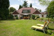 Bungalow in Cobham, Surrey