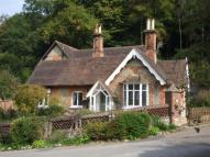 Bungalow for sale in Dorking, Surrey
