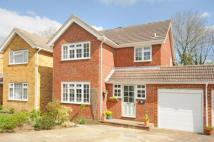 Link Detached House in North Holmwood, Dorking...