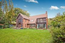 5 bedroom Detached property in Mill Race, River, Dover...
