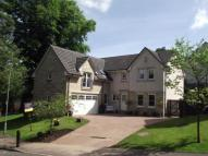 5 bed Detached house in Dunavon Avenue...
