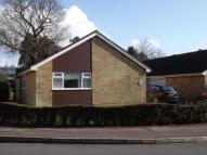 Bungalow for sale in Egg Hall, Epping, Essex