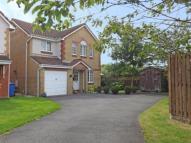 4 bed Detached house for sale in Pender Gardens, Rumford...