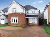 4 bed Detached house in MacDonald Court, Larbert...