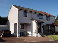 4 bed semi detached home for sale in Ferguson Grove...