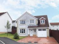 Detached house in Hogan Place...