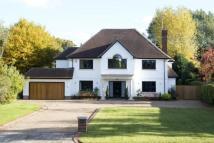 Detached property for sale in Park Avenue...