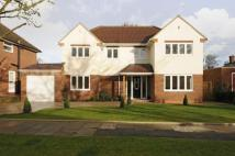 4 bed Detached house for sale in Bromley
