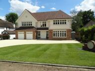 5 bedroom new house for sale in Ninhams Wood, Keston Park