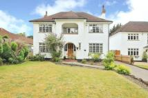 Detached home in Hollydale Drive, Bromley