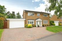 Ebury Close Detached house for sale