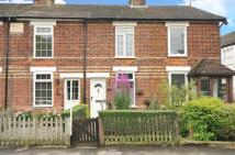 Prospect Cottages Terraced property for sale