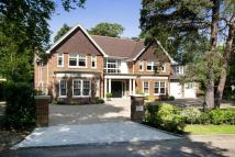 6 bedroom new home in Forest Drive, Keston Park