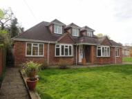 Bungalow for sale in Farnham, Surrey