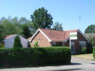 Bungalow in Rowledge, Farnham, Surrey