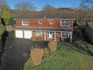 Bucks Horn Oak Detached property for sale